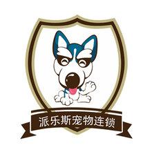 寵物美容學校-派樂斯寵物美容培訓學校面向全國招生啦圖片