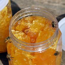 蜂蛹的吃法图片