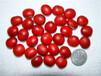 大量批发鄂西红豆种子