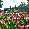 中秋节庆部门团建户外活动推荐龙华郊野农庄松山湖生态园
