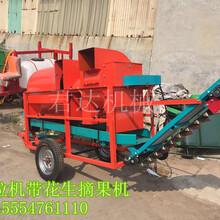 君达机械供应大型花生摘果机拖拉机带动花生摘果机