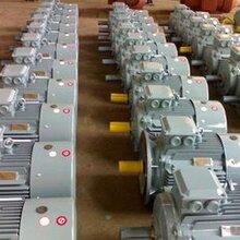 西门子电机2极-110kw-B31LE0001-3AA03-3AA4原装正品
