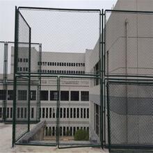 供应球场勾花护栏网运动场方便面围网绿色浸塑隔离网