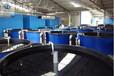 养虾桶价格对虾养殖技术对虾养殖设备对虾养殖塑料桶3.5吨塑料圆桶厂家直销