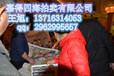 石家庄北京华卓国际拍卖公司权威鉴定香港嘉得四海王总