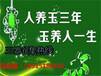 辽宁省黑漆描金花卉菊式盘鉴定特点专家老师在线咨询嘉得四海马总监