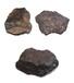 火星陨石快速高价拍卖嘉得四海文总