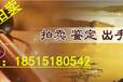 陕西咸阳市·民国珠山八友何许人雪景瓷板画《梁园飞雪》免费评估嘉得四海景总热线