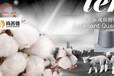 近期棉花價格恐較難上漲