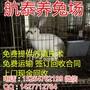 养獭兔赚钱吗?野兔养殖中的3个误区-山东航泰兔业免费咨询图片