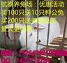 山西太原的养兔场投资10万养殖肉兔年赚百万图片