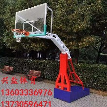 标准篮球架生产厂家优质兴盐体育图片