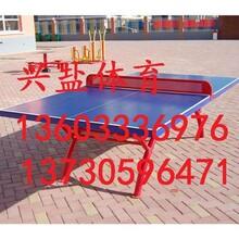 大型乒乓球台生产厂家现货供应图片