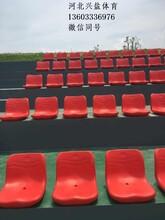 看台座椅专业生产厂家欢迎你图片