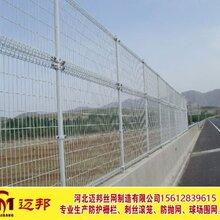 双圈护栏网_双圈护栏网厂家_双圈护栏网价格图片
