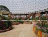 800平方米鸟巢温室价格设计安装生态温室观光种植温室价格