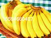香蕉粉水果粉厂家供应