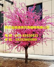 漢中仿真植物182-9280-9989咸陽仿真植物