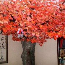 西安室外仿真树182-92809-989西安景观仿真树