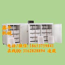 江苏徐州全自动豆芽机怎样用豆芽机发豆芽鑫丰机械无公害豆芽机图片