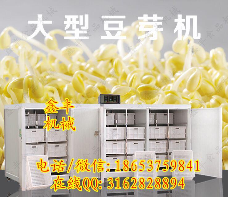 豆芽机多少钱阜阳全自动豆芽机加工技术鑫丰新型豆芽机厂家