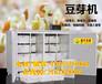 黃岡大型自動豆芽機豆芽機工作原理鑫豐豆芽機生產線