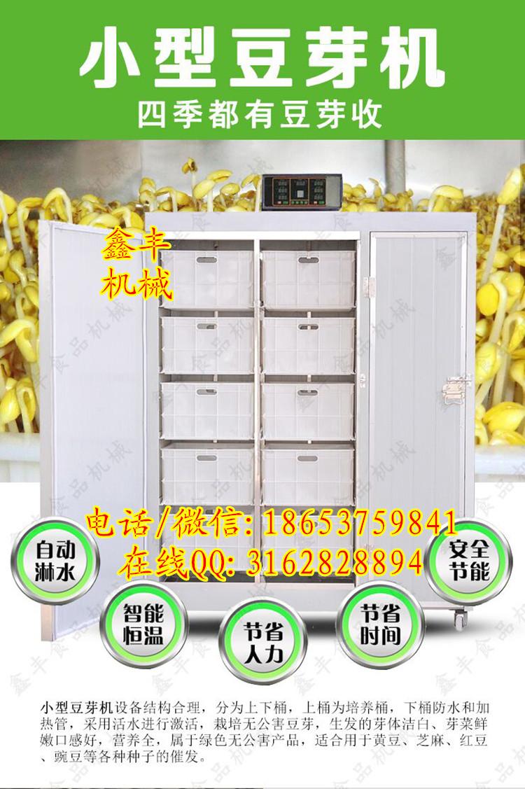 商丘哪里有豆芽机卖全自动豆芽机设备鑫丰生产豆芽机技术