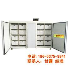 濟寧大型豆芽機價錢鑫豐雙溫雙控豆芽機廠家直銷圖片