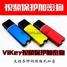 ViKey视频加密狗图片