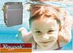 广东锅炉直销Raypak瑞帕克280家用加强型游泳池专用天然气锅炉