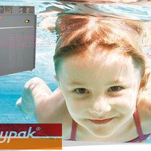 廣東鍋爐直銷Raypak瑞帕克280家用加強型游泳池專用天然氣鍋爐圖片