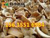 邵阳全自动蛋白肉机价格是多少,生产豆皮的机器去哪买,蛋白肉机操作视频