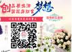 蚌埠创业的不二选择俪缘花店鲜花店加盟