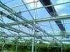 温室资材——玻璃