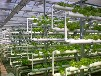 温室配套系统——其他温室配套系统