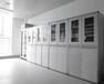 湖南实验室器皿柜_中南实验室建设