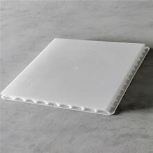 牡丹江塑料制品電力蓋板電力警示樁標志樁模具圖片