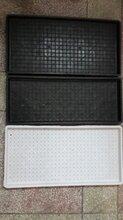 黑龙江加工塑料模具厂高铁模板防撞墙模板桥梁模板-盛达图片
