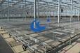 移动苗床价格合理/材质选择优质厚热镀锌