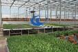 温室移动苗床厂家现货供应