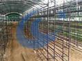 温室蘑菇大棚支架图片