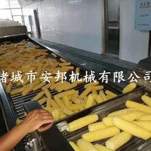 真空包装鲜食玉米加工设备图片