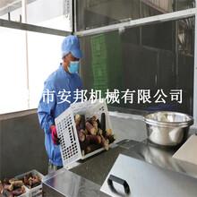 真空包裝玉米加工設備鮮食玉米加工設備圖片