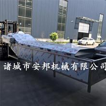 鮮食玉米加工生產線鮮食水果玉米加工設備圖片
