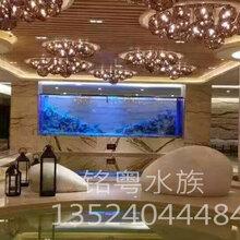 徐州玻璃工厂承接大型生态超白玻璃景观水族箱鱼缸工程