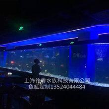 郑州有机玻璃工厂承接大型生态亚克力景观水族箱鱼缸工程