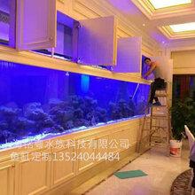柳州有机玻璃工厂承接大型生态超白玻璃景观水族箱鱼缸工程