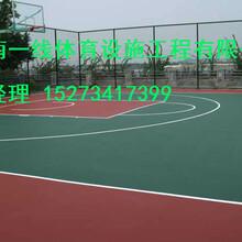 湘西硅PU塑胶篮球场施工价格诚盼来电畅销湖南及周边省市