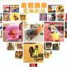 上海宠物托运、航空陆运,随机托运,一条龙服务