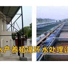 循环水养殖设备养殖循环水设备养殖水处理设备图片